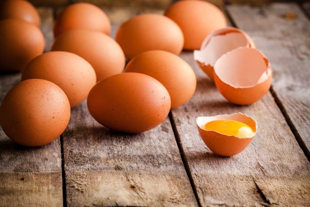 80% dos ovos produzidos no Brasil são destinados ao consumo