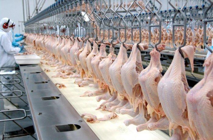 Embarques de carne de frango agora apresentam tendência de queda em relação a março