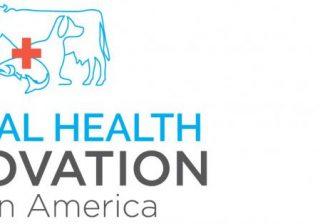 Animal Health Innovation Latin America 2019