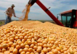 Preço dos alimentos retrocede a valores de um ano atrás, aponta FAO